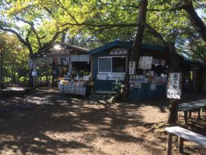 なめこ汁の城山茶屋