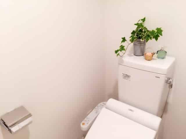トイレのお掃除。輪っかな『黒ずみ』を楽して防止する巷のテクニック